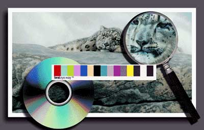 Giclee image with magnifying glass